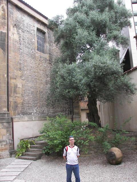 Camino_Santiago_2008 034.JPG