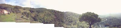 panoramica-torre.jpg