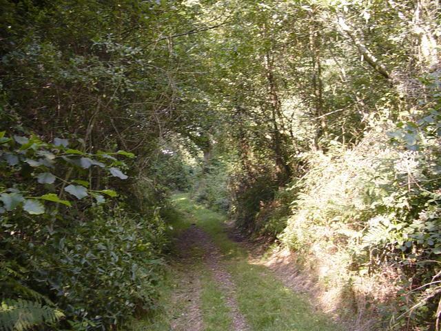 Camino Ingles_143.JPG