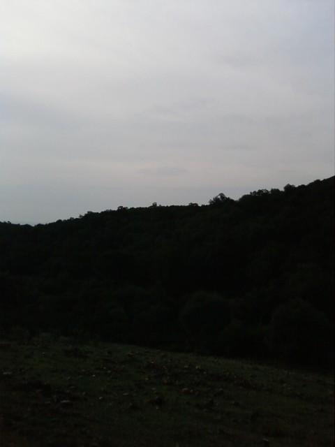 Foto0325.jpg